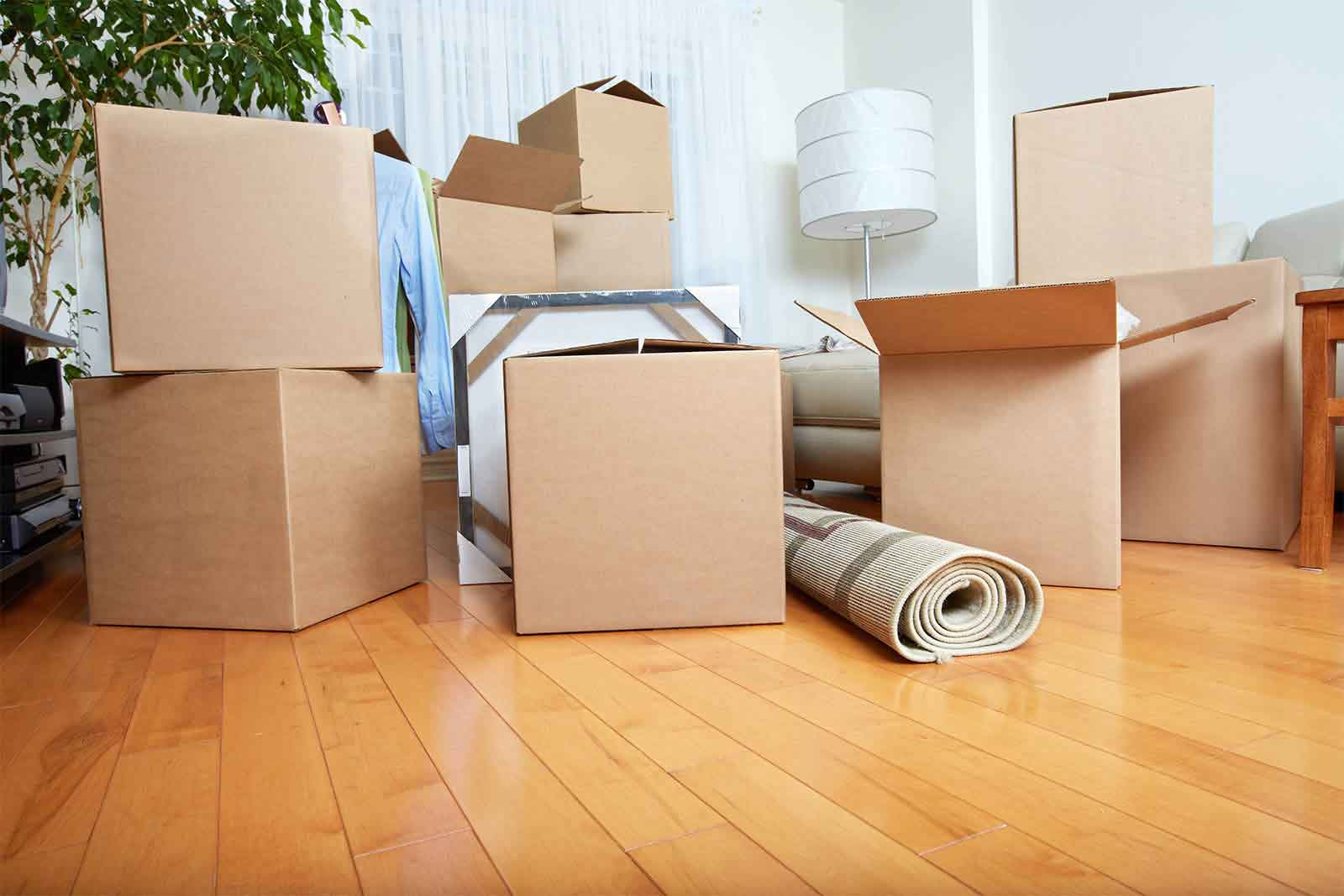 Importance And Benefits Of Domestic Removal Services