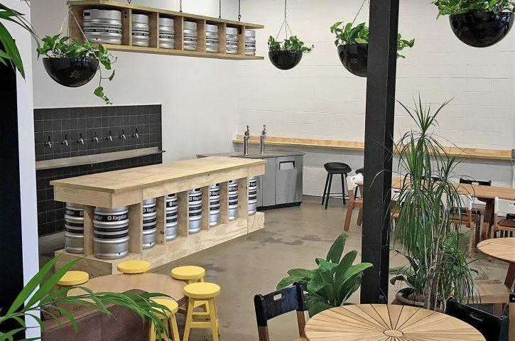 5 Benefits of Having Indoor Plants in Workspaces